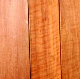 redwood5001.jpg
